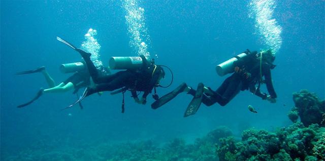 mergulho em maresias